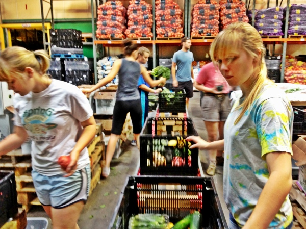 Urban Acres produce sort in action